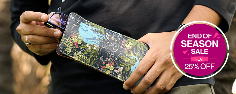 Spectacle Cases Online