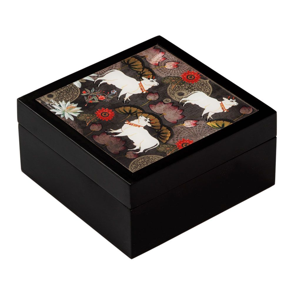 Dance of Rasa Medium Storage Box