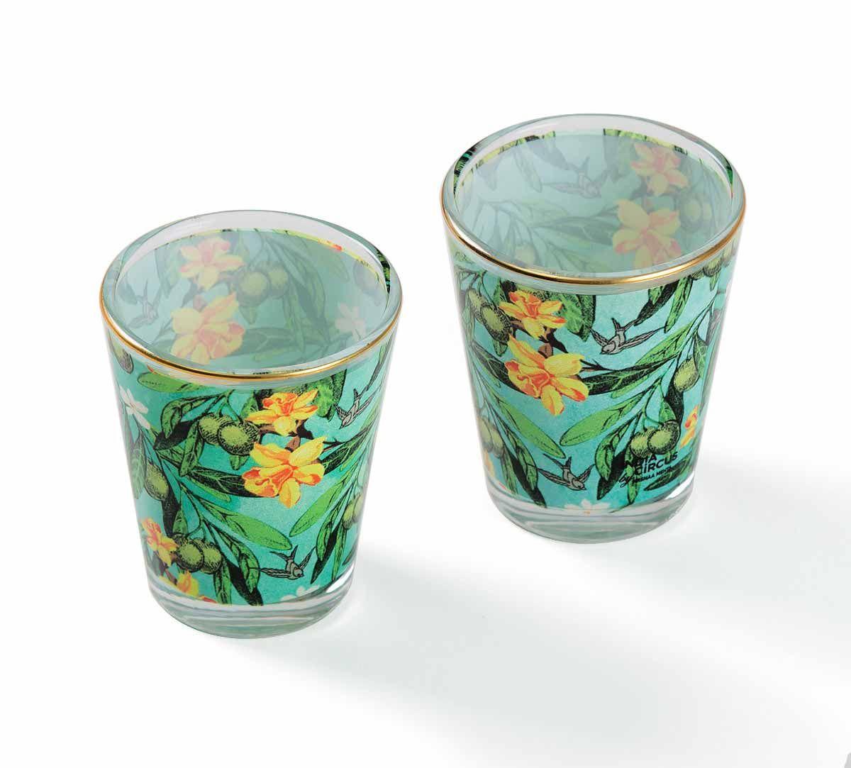 Hummingbird Hemmingway Shot Glass