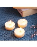 India Circus Vanilla Bean Tea Light candles (Set of 24)