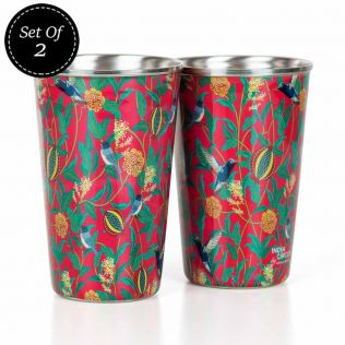 Flights of Vivers Steel Tumbler (Set of 2)