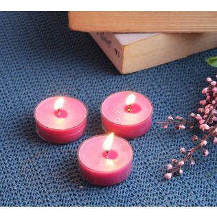 India Circus Apple Cinnamon Tea Light candles (Set of 24)
