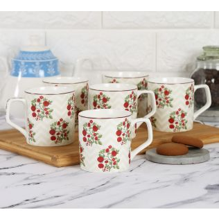 India Circus Chevron Roses Mug Set of 6