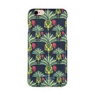 Palmeira Reiteration 6/6s Cover