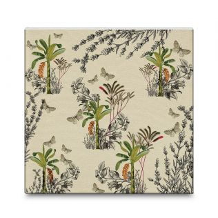 India Circus Desert Plants 16x16 and 24x24 Canvas Wall Art