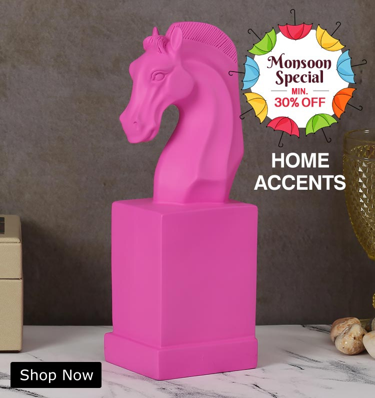 Buy Home Accent Products Online